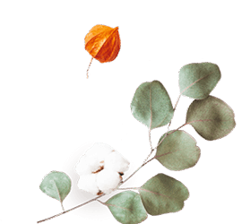 https://soay.be/wp-content/uploads/2020/12/floating_image_flower_02.png